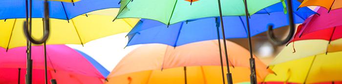 Churchill Knight Umbrella SDC